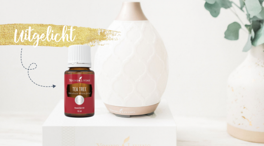 Tea Tree, Essentiële olie uitgelicht, Young Living, Blooming Blends, huidverzorgingsproduct, nare geur verwijderen, vermindert vlekken, ondersteunt huid